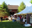WRGN's More Than A Yard Sale 2021